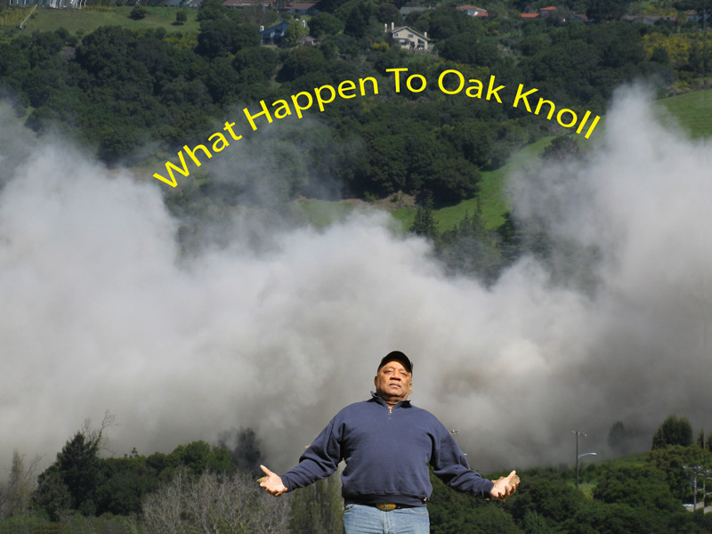 What Happened to Oak Knoll, 2011, Logan Williams